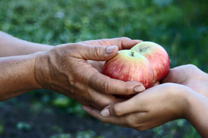 teach tots giving